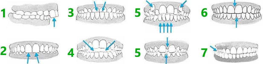 category-orthodontics